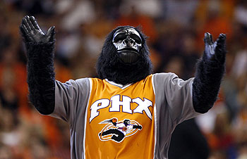 Phoenix Suns looking for gorilla