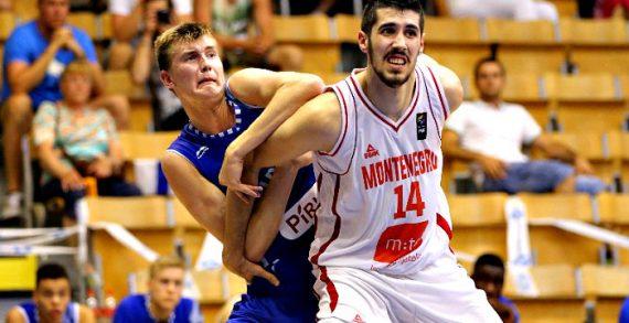 Milovan Draskovic to bolster Wels' roster