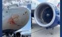 Utah Jazz flight makes emergency landing after take-off
